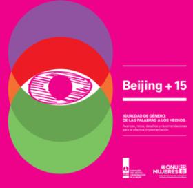 BEIJING+15. Igualdad de género: de las palabras a los hechos