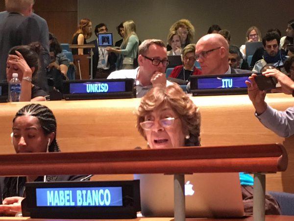 FEIM en el Foro Político de Alto Nivel de Naciones Unidas